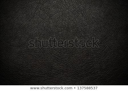 黒 · 革 · 美しい · ブルネット · 少女 - ストックフォト © disorderly