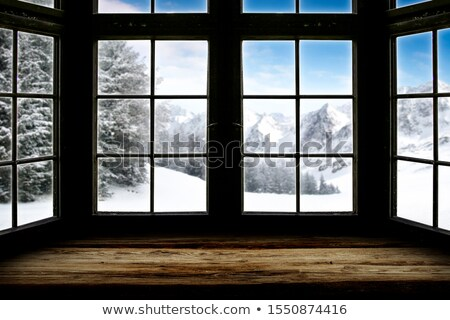 View of the snowy landscape  Stock photo © frank11