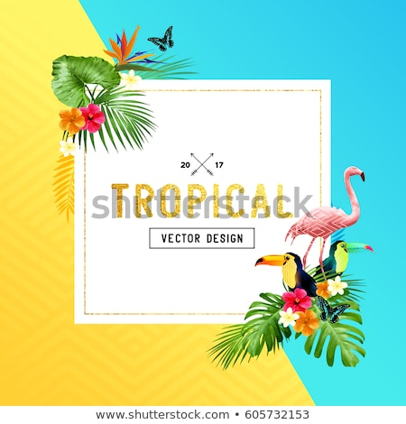 Summer Tropical Background With Butterfly Vector Stockfoto © solarseven