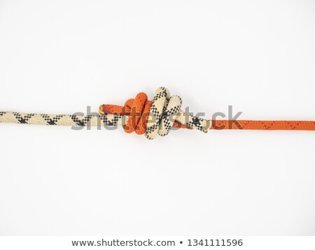 Grapevine knot Stock photo © Zerbor