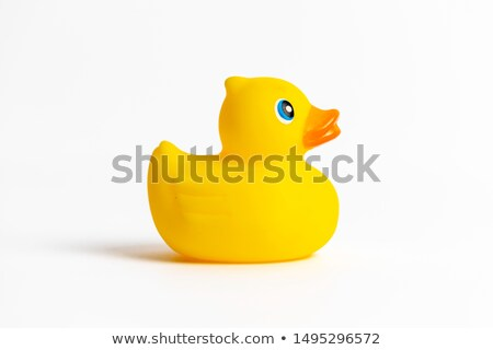 yellow bath duck Stock photo © jirkaejc