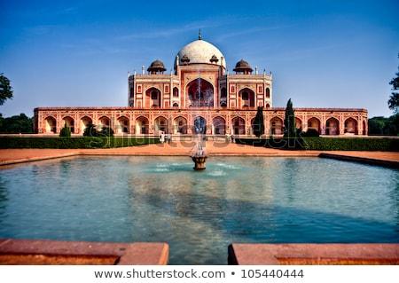 sír · Delhi · India · híres · fa · fű - stock fotó © meinzahn