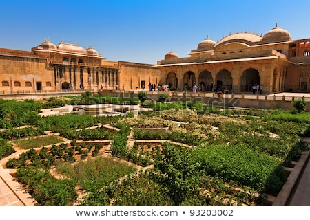 Mooie tuinen fort Indië bloem groene Stockfoto © meinzahn