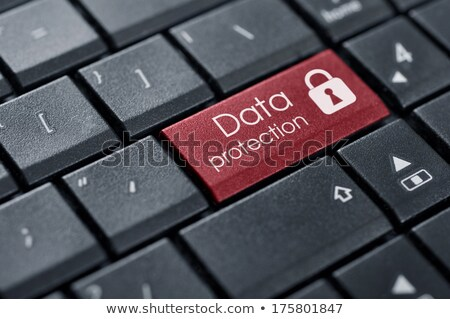 data protection on red keyboard button stock photo © tashatuvango