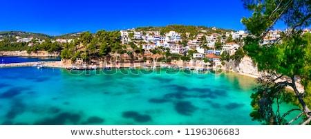 Beira-mar ver Grécia pinheiro azul mar Foto stock © trgowanlock