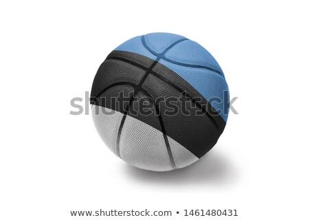 Basketbal bal Estland vlag witte eps Stockfoto © Istanbul2009