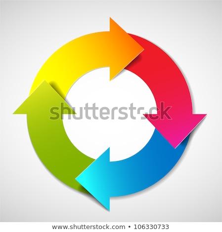 vector colorful life cycle diagram schema stock photo © orson