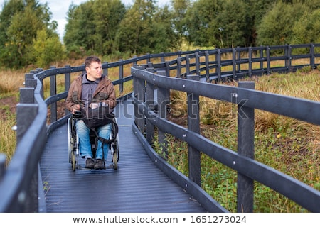 Wheelchair accessible nature trail Stock photo © Mps197