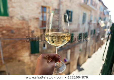 Lived-in Tuscan Kitchen Stock photo © stefanoventuri