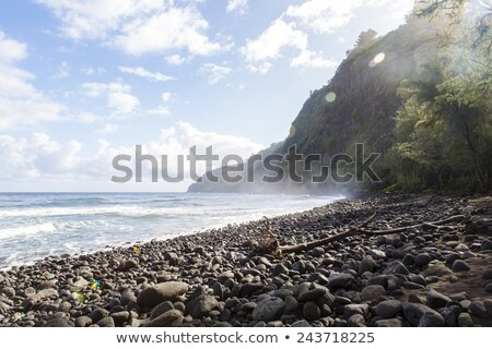 güzel · siyah · taş · plaj · vadi · Hawaii - stok fotoğraf © jarin13