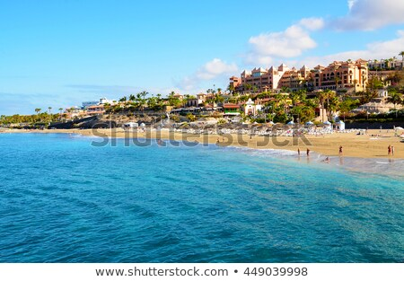 Costa tenerife canárias Espanha praia pedra Foto stock © amok
