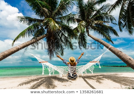 exotic lonely beach with palm trees and ocean stock photo © farina6000