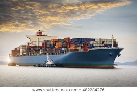 Cargo Ship Sailing in Ocean Stock photo © Discovod