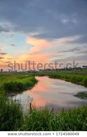 Roeien boot zonsondergang alleen silhouet brug Stockfoto © olandsfokus