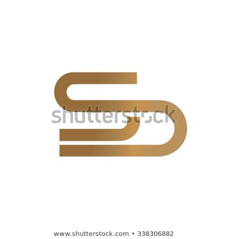 double letter s icon ss logotype Stock photo © blaskorizov
