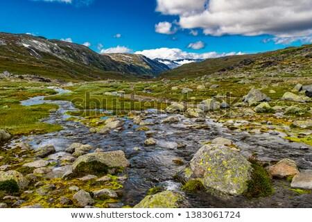 湖 · 公園 · 徒歩 · トラック · 雪 · 山 - ストックフォト © slunicko