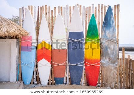 vetor · tropical · verão · adesivos · conjunto · rabisco - foto stock © pathakdesigner