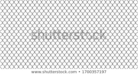 mesh netting and barbed wire Stock photo © tracer