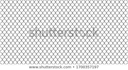 Drutu kolczastego wysoki ogrodzenia bezszwowy ściany Zdjęcia stock © tracer
