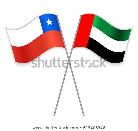 Birleşik Arap Emirlikleri Şili bayraklar bilmece yalıtılmış beyaz Stok fotoğraf © Istanbul2009