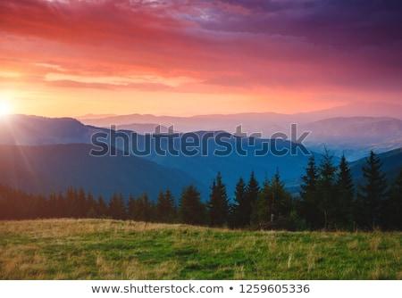 montagnes · vue · brouillard · matin · baignoire · ciel - photo stock © kotenko