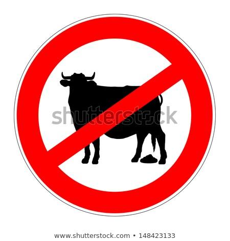 No Bull Sign Stock photo © Krisdog