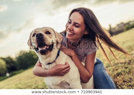 mestre · jogar · cão · pequeno · golden · retriever · gramado - foto stock © svetography
