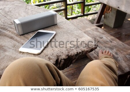 Smartphone and portable speaker Stock photo © magraphics