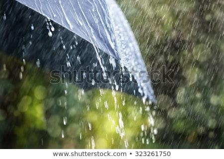 дождь вниз озеро Thunder Storm Сток-фото © klikk