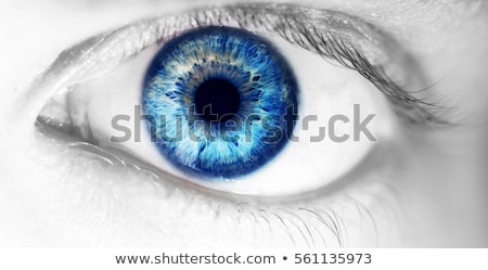 brown eye of a young woman close up focus on iris stock photo © photocreo