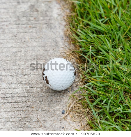Golf ball near the cart path stock photo © smuay