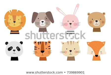 vektor · szett · vad · macskák · rajzolt · állatok · fehér - stock fotó © natalya_zimina