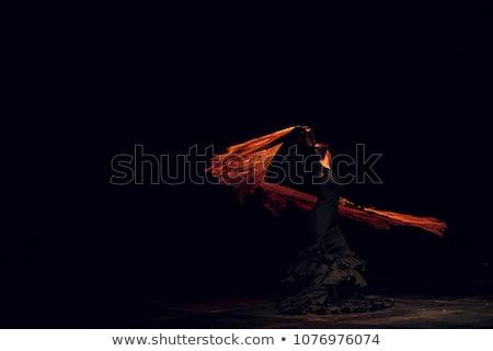 cigány · flamenco · táncos · Spanyolország · lány · piros · rózsa - stock fotó © adrenalina