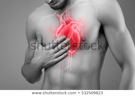 Stethoscope Human Heart Stock photo © Lightsource