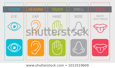 Buttons with the sense of smelling organ Stock photo © bluering