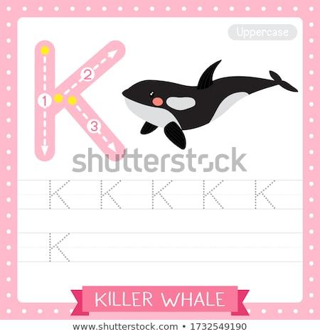 письме убийца кит иллюстрация рыбы фон Сток-фото © bluering