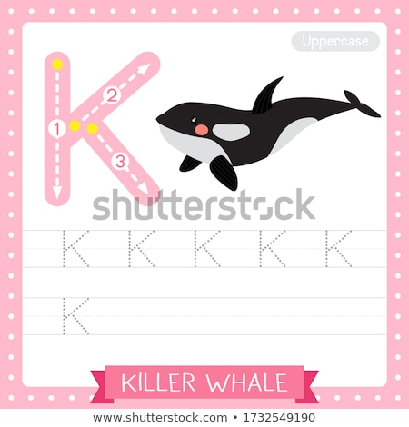 Carta asesino ballena ilustración peces fondo Foto stock © bluering