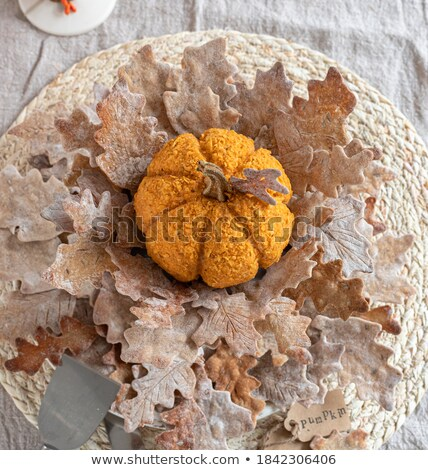 Pumpkin seed cheddar cracker stock photo © Digifoodstock