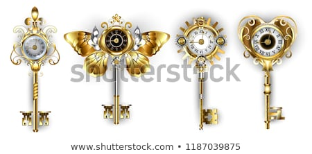 golden key with butterfly wings Stock photo © blackmoon979