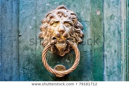 decorative gilded lion head door knob and knocker stock photo © stevanovicigor