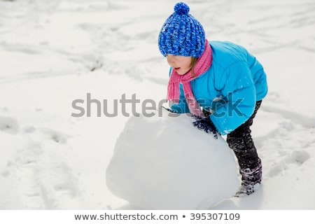 Sneeuw creatieve plaat japans sushi Stockfoto © Fisher