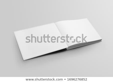 первый пустая страница открытой книгой изолированный белый образование Сток-фото © orensila