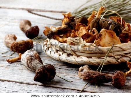 Stock photo: Arrangement of Dried Mushrooms