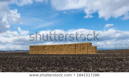 Stock photo: Rural landscape with a stack of dry hay in the field of mountain