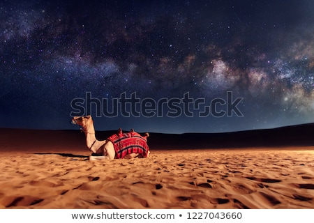 Emirados Árabes Unidos espaço vermelho ver ilustração 3d Foto stock © Harlekino