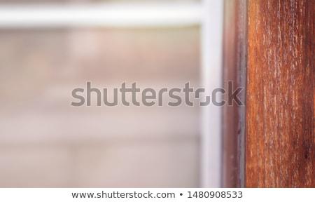 porta · de · entrada · casa · velho · porta · madeira - foto stock © nobilior