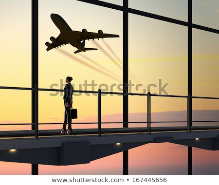 Business woman with a suitcase, waiting Stock photo © IS2