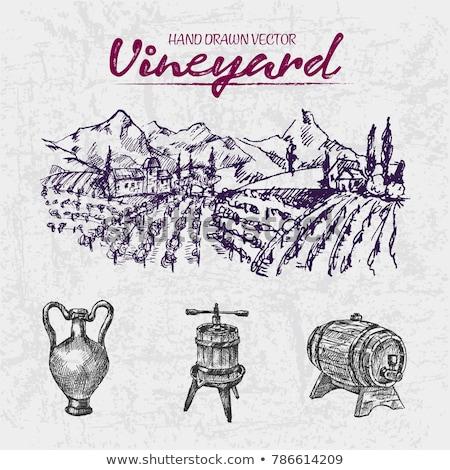 ilustração · copo · de · vinho · garrafa · monte · uvas - foto stock © frimufilms