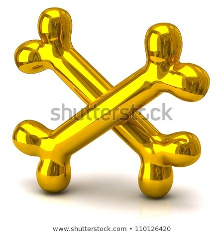 Two golden bones stock photo © sommersby