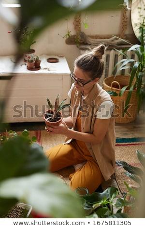 Fiatal nő kert kicsi szoba virág pillangó Stock fotó © IS2